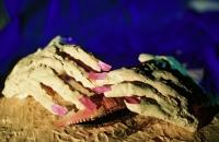 Crab Hands