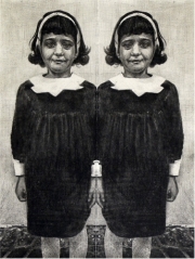 Mirror (Diane Arbus Twins)
