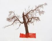 Untitled (Broken Tree)