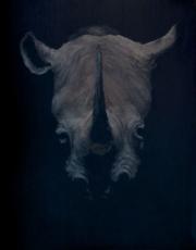 Rhinoceros (Totem)