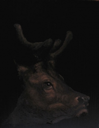 Elk (Totem)