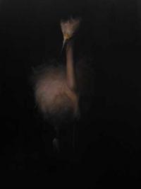 Egret Wading